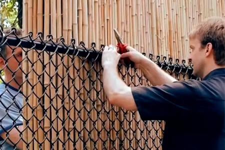 закрытый забор из сетки рабицы фото